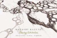 hayashikazune_dm